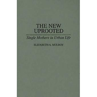 Den nye hjemstedsfordrevne enlige mødre i bylivet af Mulroy & Elizabeth A.