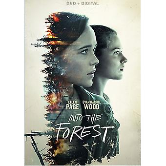 Into the Forest [DVD] USA import
