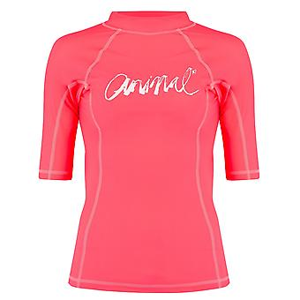 Animal Neon Orange Vickie Womens Short Sleeved Rashguard
