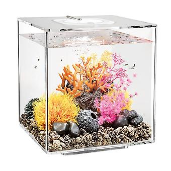 BiOrb CUBE 30 Aquarium MCR LED - Clear
