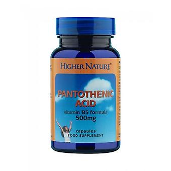 Higher Nature Pantothenic Acid 500mg Capsules 60