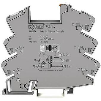Relay socket 1 pc(s) WAGO 857-104 (W x H x D) 6 x 81 x 94 mm