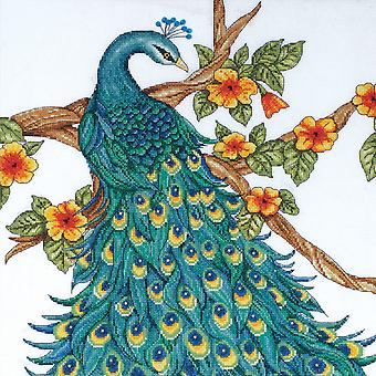 Peacock Counted Cross Stitch Kit 14