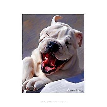 Bull Dog Joyride Poster Print by Robert McClintock (13 x 19)