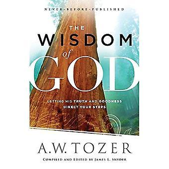 La sagesse de Dieu: laisser sa vérité et la bonté de diriger vos pas