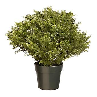 National Tree Artificial 24inch Argentea Plant with Growers Pot