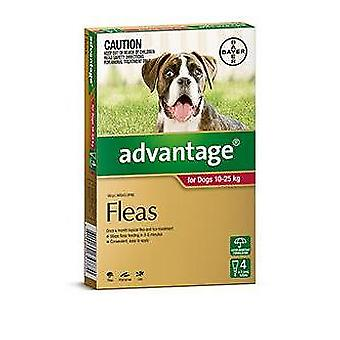 Advantage Red 4 Pack Large Dogs 10-25kg