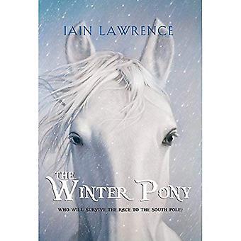 The Winter Pony