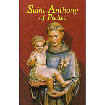 St. Anthony of Padua [Large Print]