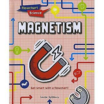 Magnetism (flödesschema vetenskap)