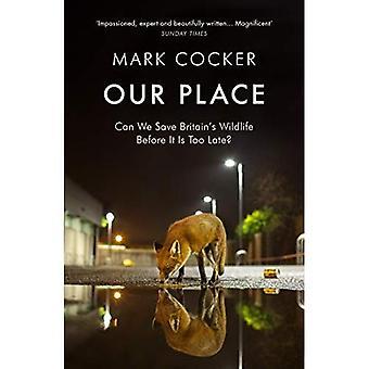 Vår plats: Kan vi spara Storbritanniens vilda djur innan det är för sent?