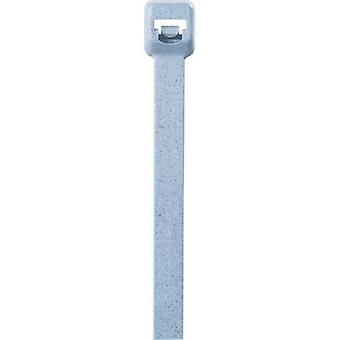 Panduit A12 PLT1M-C86 Cable tie 100 mm Blue Detectable 100 pc(s)