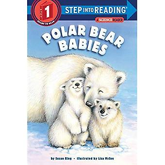 Polar Bear Babies (Step into Reading)