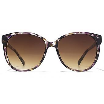 American Freshman Soft Cateye Square Sunglasses In Purple Tortoiseshell