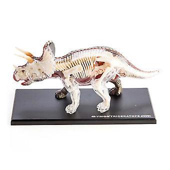 4D анатомии трицератопсов динозавров