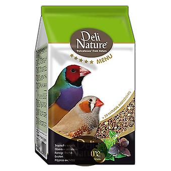 Beyers Nature Deli Menu finches and goldfinches (Birds , Bird Food)