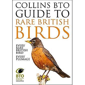 Guide BTO Collins aux rares British Birds