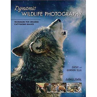 Dynamic Wildlife Photography