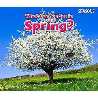 Vad kan du se under våren? (Säsong)