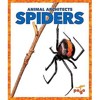Spiders (Animal Architects)