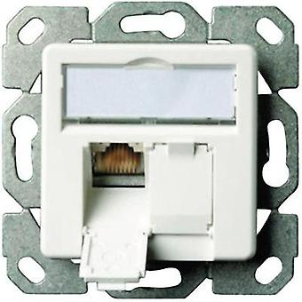Network outlet Flush mount Insert with main panel CAT 5e 2 ports Telegärtner Alpine white