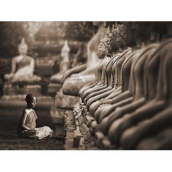 Young buddhistischer Mönch beten Thailand Poster Print von Pangea-Bilder