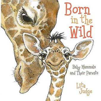 Born in the Wild - Baby Mammals and Their Parents by Lita Judge - Lita