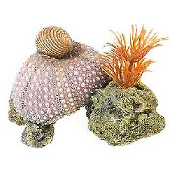 Classic For Pets Sea Shell/Plant (Fish , Decoration , Ornaments)