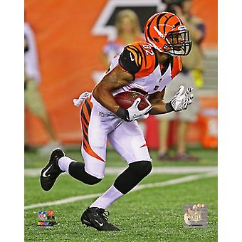 Marvin Jones 2012 Action Photo Print