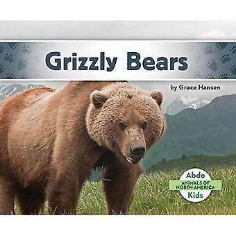 Grizzli (animaux d'Amérique du Nord)