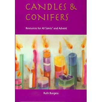 Candles and Conifers: Resources for All Saints' to Advent