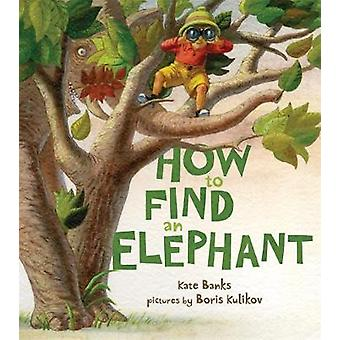 How to Find an Elephant by Kate Banks - 9780374335083 Book