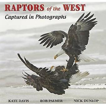 Raptors of the West - Captured in Photographs by Kate Davis - Rob Palm