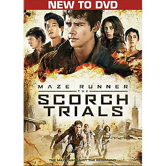 Maze Runner: The Scorch Trials [DVD] USA import
