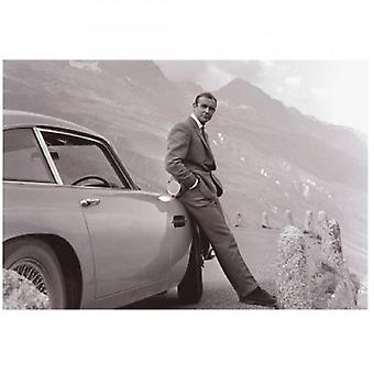 Sporting Display James Bond: Aston Martin Art Print