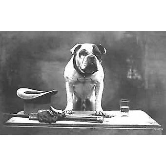 One of Englands best - Bulldog with top hat, cane and gloves. Greetings Card