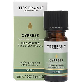 Tisserand Aromatherapy Cypress Wild Crafted Essential Oil