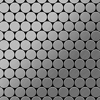 Metal mosaic Stainless Steel ALLOY Dollar-S-S-B