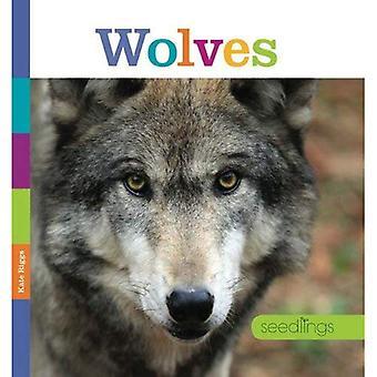Wolves (Seedlings)