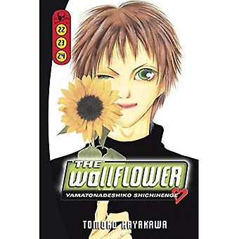 De Wallflower, Volume 22-24