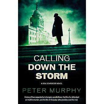 Calling Down The Storm - The Fifth Ben Schroeder Legal Thriller by Pet