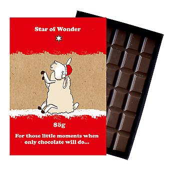 Funny Christmas Gift For Men Women Boxed Chocolate Festive Xmas Present for Him or Her XMS107