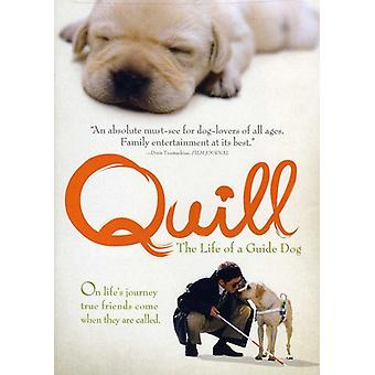 Quill: The Life of a Guide Dog [DVD] USA import