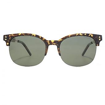 Polaroid Contemporary Browline Style Sunglasses In Havana Gold Polarised