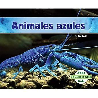 Animales Azules (Blue Animals) (Animales de Colores (Animal Colors))