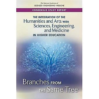 Die Integration der Geisteswissenschaften und Künste mit Wissenschaften, Technik und Medizin im Bereich der Hochschulbildung: Niederlassungen vom selben Baum