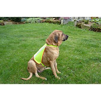 Buster Reflective Dog Vest Medium 8-15kg