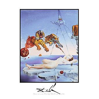 Reve Cause par la Vol dune Abeille Poster Print by Salvador Dali (22 x 28)