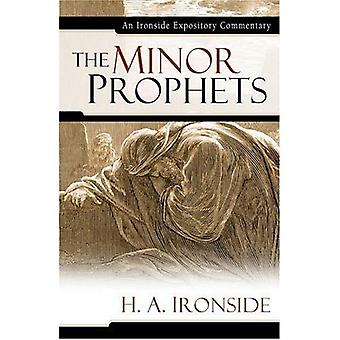 The Minor Prophets (Ironside Expository Commentaries) (Ironside Expository Commentaries (Hardcover))