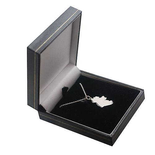 Silver 29x15mm Map of Ireland Pendant with a rolo Chain 14 inches Only Suitable for Children